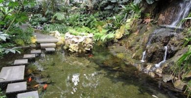 Jardín de las Palmeras