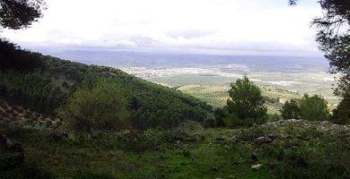 Parques La Sierra y Santa Catalina