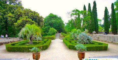 Jardin de Plantas Montepellier