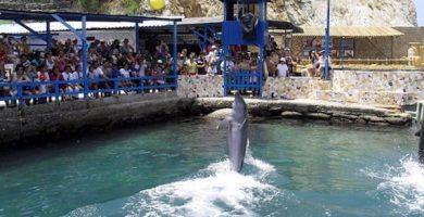 Acuario y Museo del Mar
