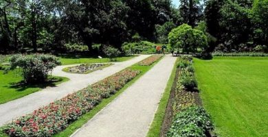 Zagreb Jardín Botánico