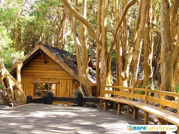 bosque los arrayanes