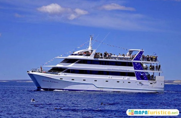 crucero del golfo
