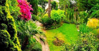 jardin botanico gibraltar