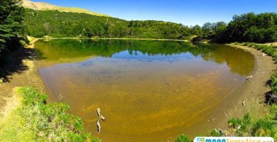 laguna verde selva triste