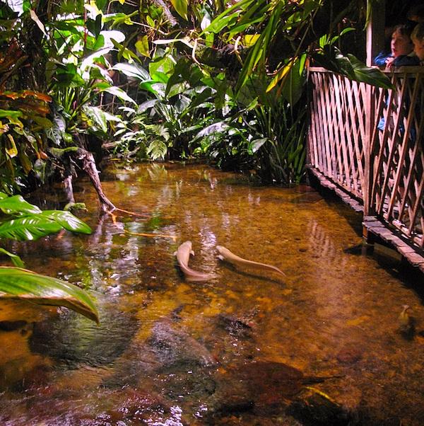mapa turistico aquaria vatten museum
