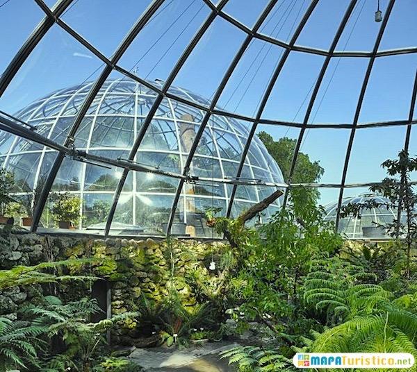 jardin botanico de zurich
