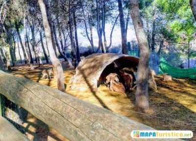 mapa-turistico-zoo-de-guadalajara