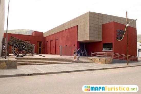 museo de la vid y el vino 8
