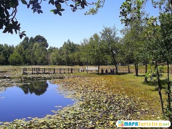 parque saval