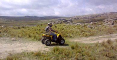 pilo quad