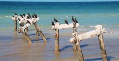playa telchac