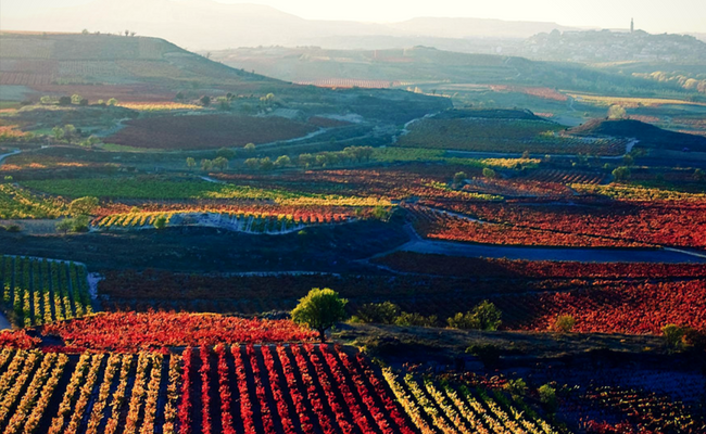 Rioja desde el aire