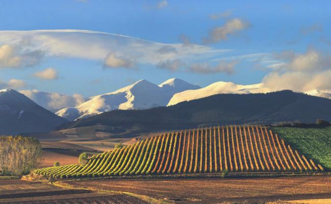 Rioja skyline