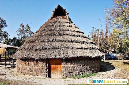rucas mapuche