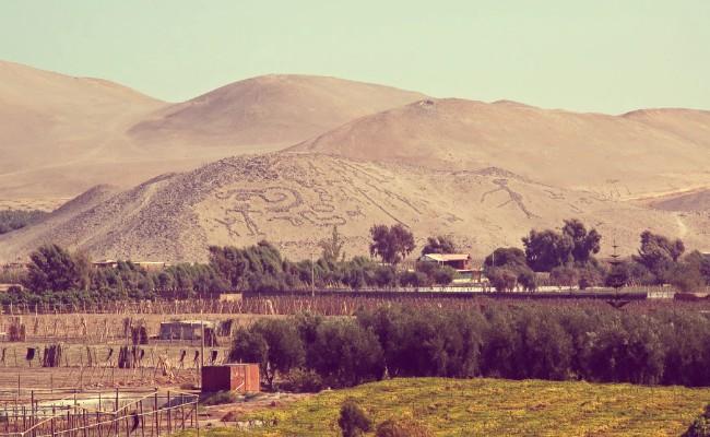 valle de azapa centro de arica