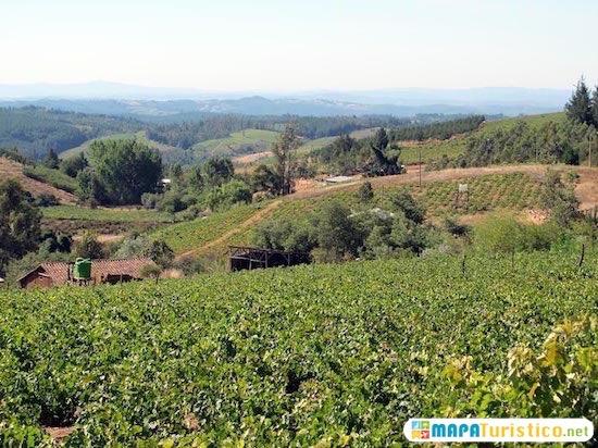 valle de itata